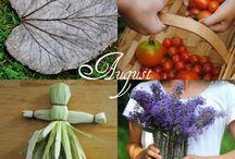 Summer Celebrated! / by Susan Kaminski-Saracino