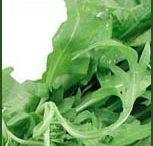 Salads and Dressing / Recipes