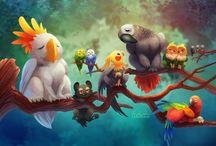 lodis birds