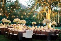 Wedding Lighting / 0