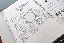 Study planner
