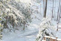 Winter, Frost, Eis und Schnee, ®™