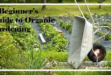 Organic gardening / by Jodey Christen