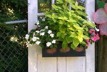 Porta(s) e jardim
