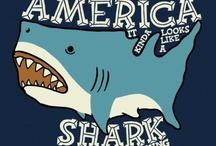 Gah! SHARK!!!