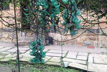 Jardines y huertas / Ideas de jardinería y huertas urbanas