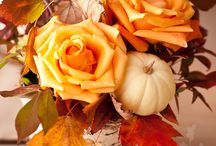 FALL AUTUMN ROSES