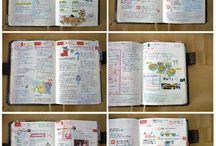 librospalabrasregistrosdibujosarte
