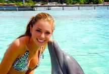 Swim wirh dolphins....and other experiences / by Helen Lloyd