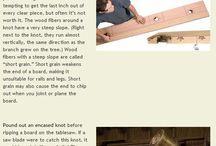 Selectarea lemnului