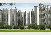Purchase/Sell Properties in Noida /  Purchase/Sell Properties in Noida- Buy and sell residential property in Noida on grihapraveshindia.com as per your desire. Find the latest residential projects apartments, houses, flats and villas available for sale and rent in Noida.