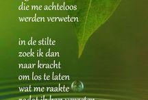 Mooie gedichten
