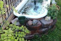 aquarium for backyards