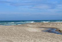 Vesterhavet / Sommer 2013