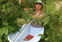 Tablier pour ramasser les plantes aromatiques