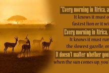 Africa Sayings