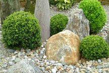 Kivikkopuutarha