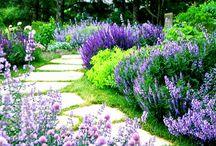 garden '18