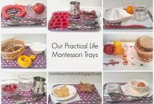 Montessori Actividades