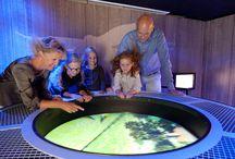 Uitgelicht: Natura Docet Wonderryck Twente. / Winnaar Museum Ontdekking 2015. Een geweldig museum en gegarandeerd een actief en levendig uitje: dieren bekijken, botten en skeletten, buiten speuren...Even kijken op de website is een aanrader...pas op voor de Spin.