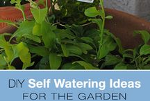 Self watering ideas for the garden