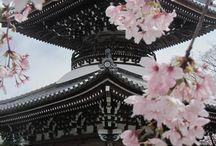 Japan ♥