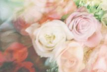 flower youre so sweet