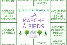 Marche / Marche