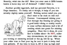 Things for Equestrians