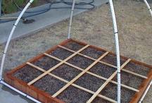 Backyard Farm Ideas