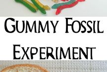 Fossils, dinosaurs and earth science
