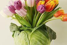 ...tulips