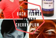 Homeopathy Bach flower remedies / Bach flowers Remedies affects the emotion and corrects emotional disharmony, imbalance in the person, which gave the feeling of physical well-being. Dr Edward Bach  discovered  38 flower Remedies containing healing properties with the help of which the sufferer could again strength to over come his anxieties, his fears, depression and so assist in his own heating in a natural way.