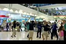 Favorite flash mob videos / by tacogirl Belize