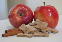 Tana's Treats- our all natural and organic dog treats!