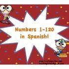 bilingual education / by Nikki