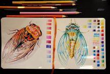Atelier - Dessiner en couleur