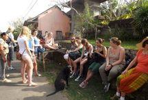 Bali volunteer