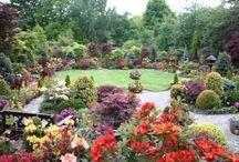 csodálatos kertek
