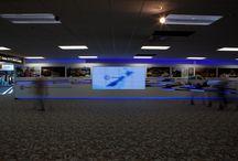 Chorus, Wellington Airport / ONELAN digital signage installed in Wellington Airport, New Zealand