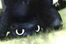 Így neveld a sárkányodat/Sárkányok, a Hibbant-sziget védelmezői (harcosai)