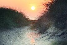 The Sun / by Valerie Manseau
