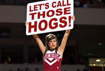 """Go Hogs"" crafts and ideas / Arkansas Razorbacks / by Melissa Ray"