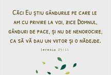Versete biblice