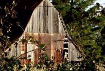 Barns I love