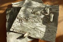 Birch Bark Sheets and Birch Bark Tubes / Birch Bark Sheets and Tubes available at Branches Wholesale.