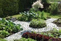 veggie garden front yard