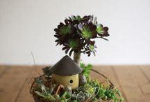 MiniatureGarden