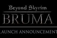Beyond Skyrim / The Beyond Skyrim modding project collaboration.