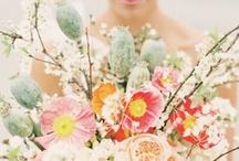 Wild flowers / Wild and amazingly beautiful